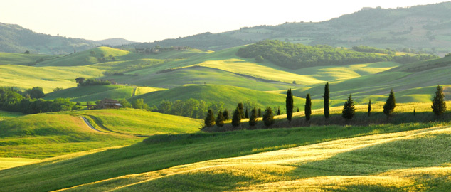Toscana in campagna  FRIENDSINITALY