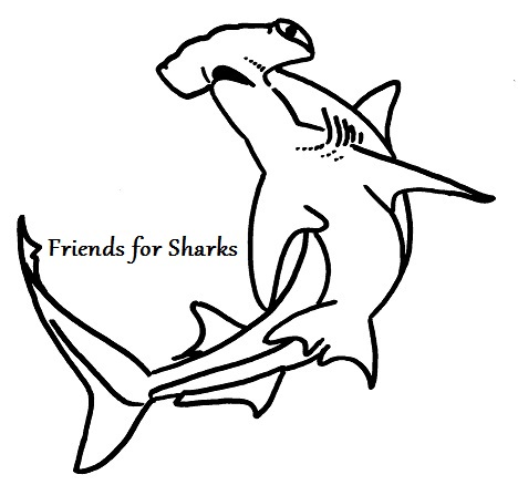 Friends for Sharks