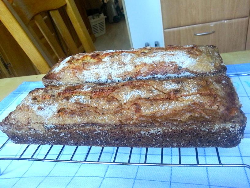 Apple Raisin Amish Friendship Bread
