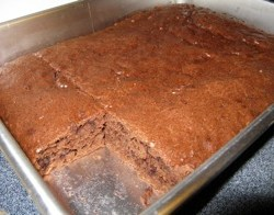 Chocolate Amish Friendship Bread Brownies
