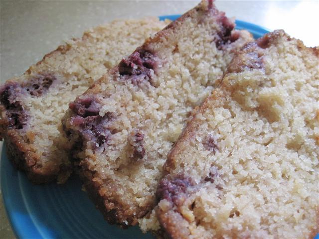 White Chocolate Blueberry Amish Friendship Bread by Cynthia Hale ♥ friendshipbreadkitchen.com