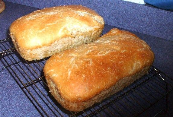 Rustic Sourdough Amish Friendship Bread image by Beck Lewis ♥ friendshipbreadkitchen.com