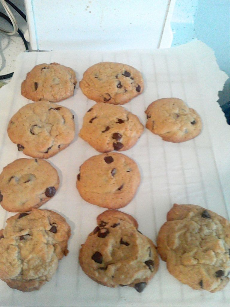 Amish Friendship Bread Chocolate Chip Cookies by Elizabeth Bruce ♥ http://www.friendshipbreadkitchen.com