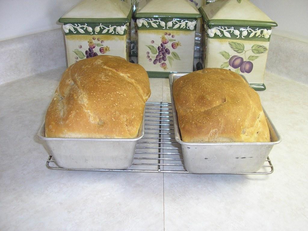 Rustic Sourdough Amish Friendship Bread image by Cheryl Olson ♥ friendshipbreadkitchen.com