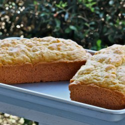 Amish Friendship Bread (Sugar-Free)