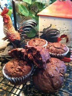 Double Chocolate Chip Coconut Amish Friendship Bread Muffins by Sandy Kelley-Jones | friendshipbreadkitchen.com