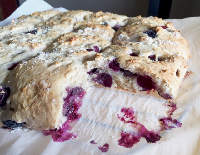 Amish Friendship Bread Blueberry Biscuits | friendshipbreadkitchen.com