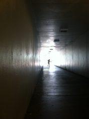 Dancing Light, Sara Waxman