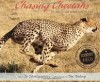 Chasing_Cheetahs__The_Race_to_Save_Africa_s_Fastest_Cat__Scientists_in_the_Field_Series___Sy_Montgomery__Nic_Bishop__9780547815497__Amazon_com__Books