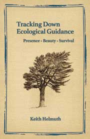 Tracking Down Ecological Guidance