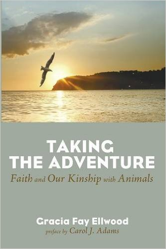 Taking the Adventure cover