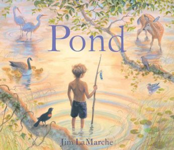books-pond
