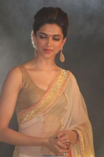 Palam Silks Chennai Express Meena Hunt Photos-Friendsmoo (10)