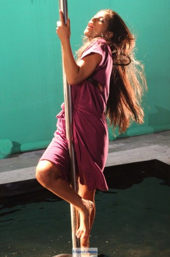 Poonam Pandey Nasha Movie Latest Hot Photos - Friendsmoo (5)