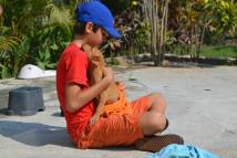 A young volunteer gets some special kisses