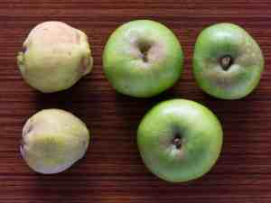 Beautiful, in-season quince and Bramley apples.