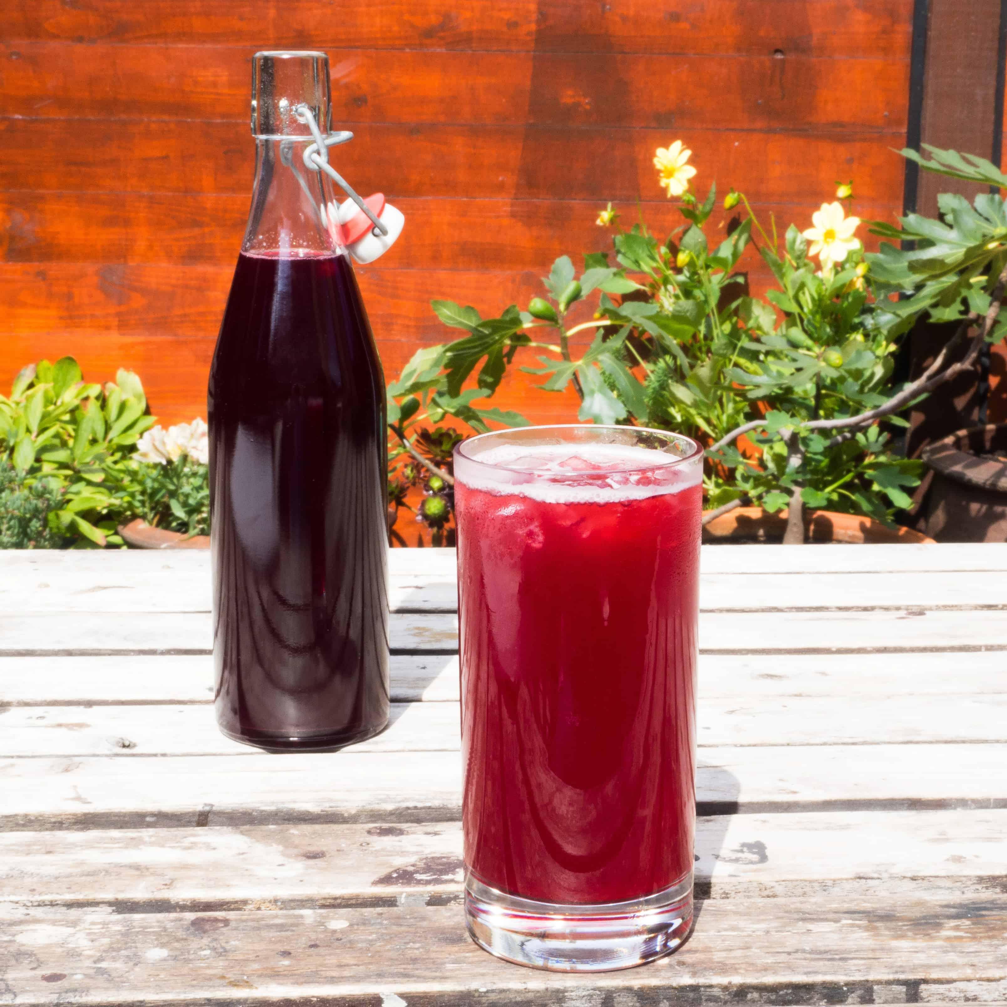 Home made summer fruit cordial. Gluten-free, vegan, allergy-friendly, seasonal.