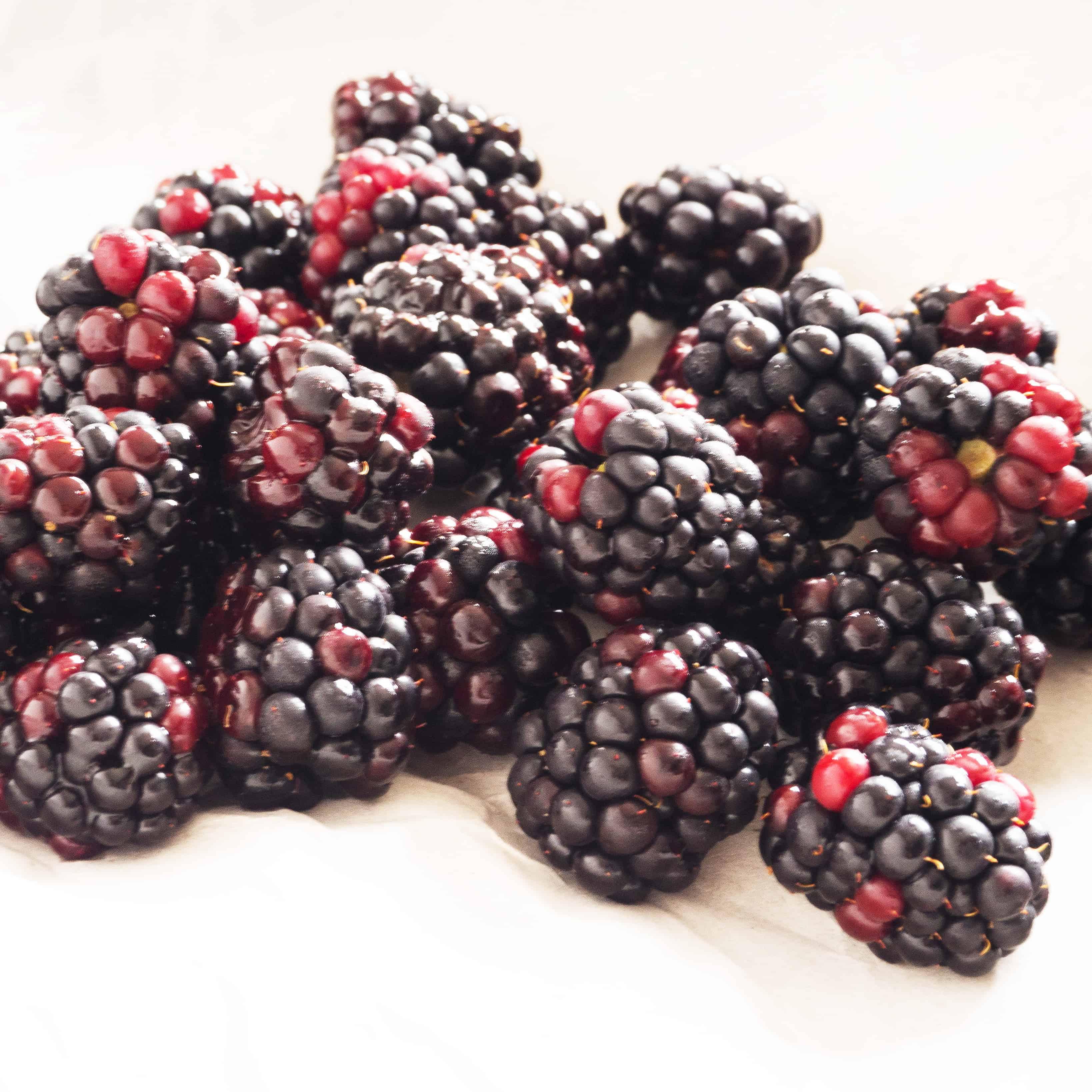 Seasonal British Blackberries. Gluten-free, vegan, allergy-friendly, seasonal