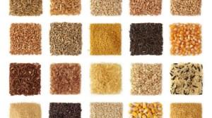 Glutenfrie ingredienser