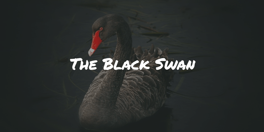 The Black Swan Frinans