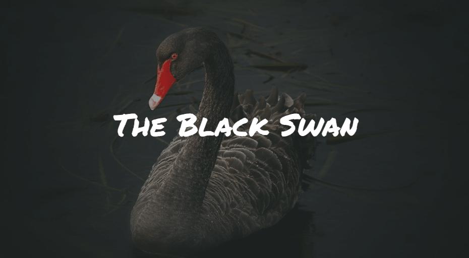 The Black Swan Frinans