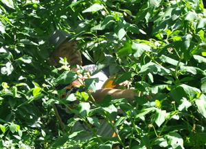 Im Cold Brook Park musste Torben Casser viuele knifflige Situationen überstehen.