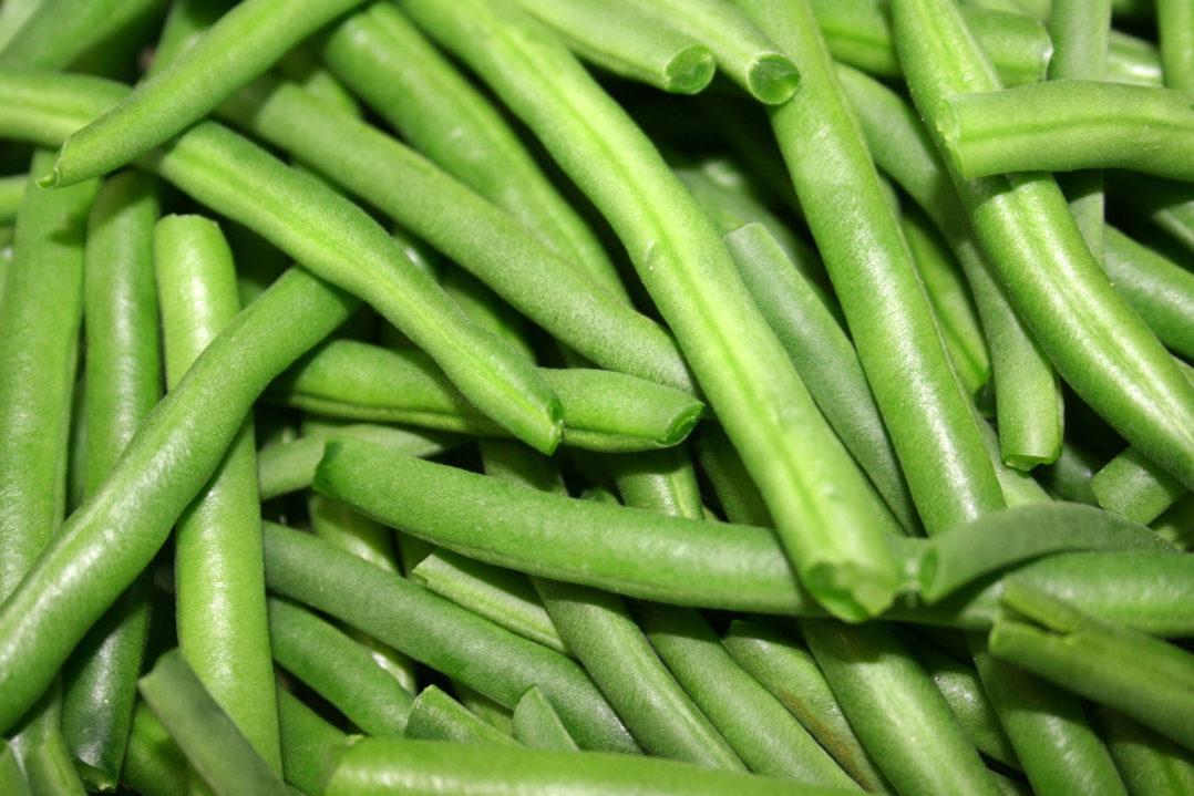 Wie man Fisolen bzw grne Bohnen einfrieren kann  Die