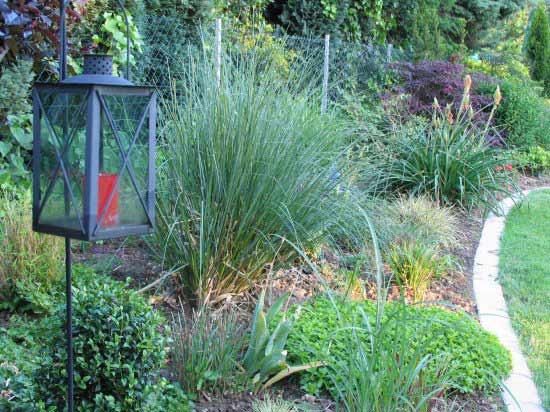 pflegeleichter garten steine - boisholz, Garten und erstellen