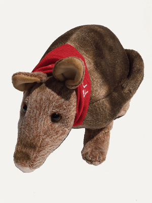 Tex the Armadillo Front