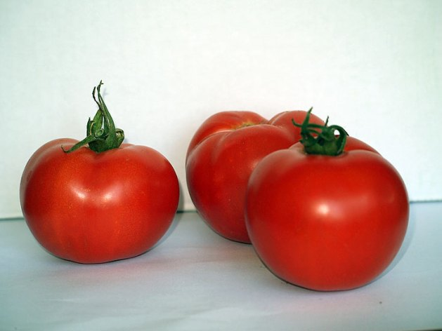 Early Girl tomatoes