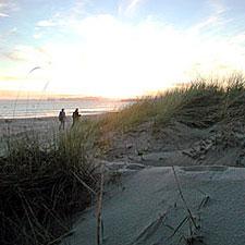 Limantour Beach, Marin County