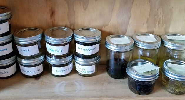 Tinctures. At right are infusions in process, at left completed, strained tinctures.