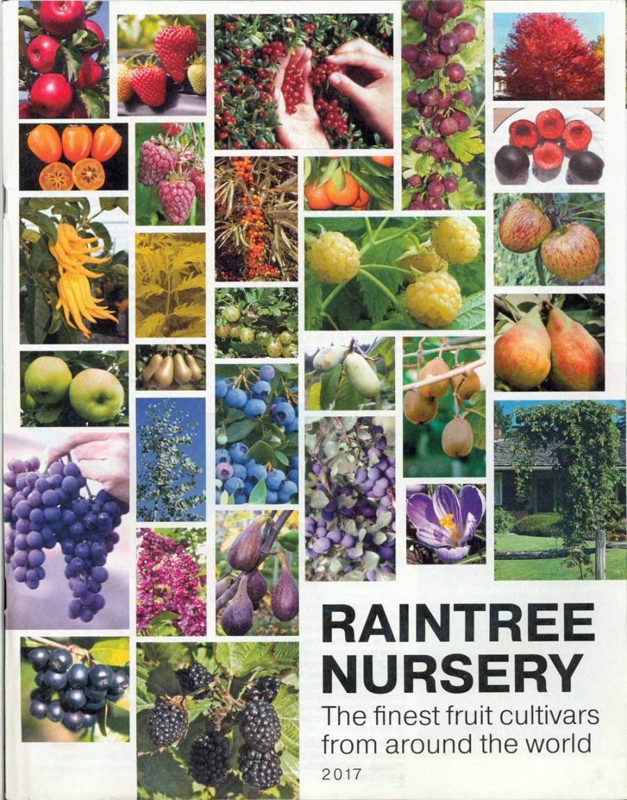 Raintree Nursery, Washington, 8.5 x 10.75 in., 96 pp.