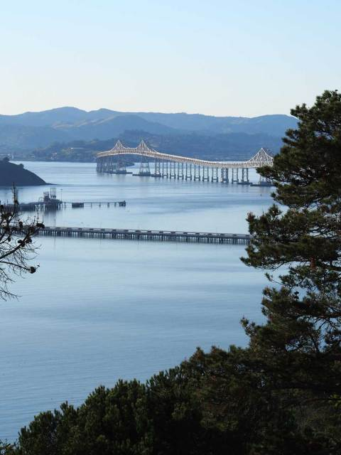 Richmond-San Rafael Bridge, viewed from Miller/Knox Park.