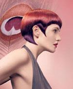 Haarfarbe  FriseurFragende