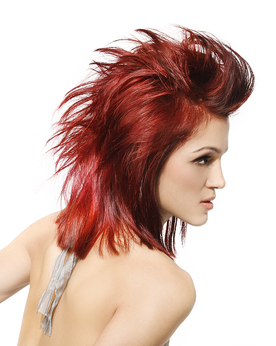 Punk  Style  Friseurcom