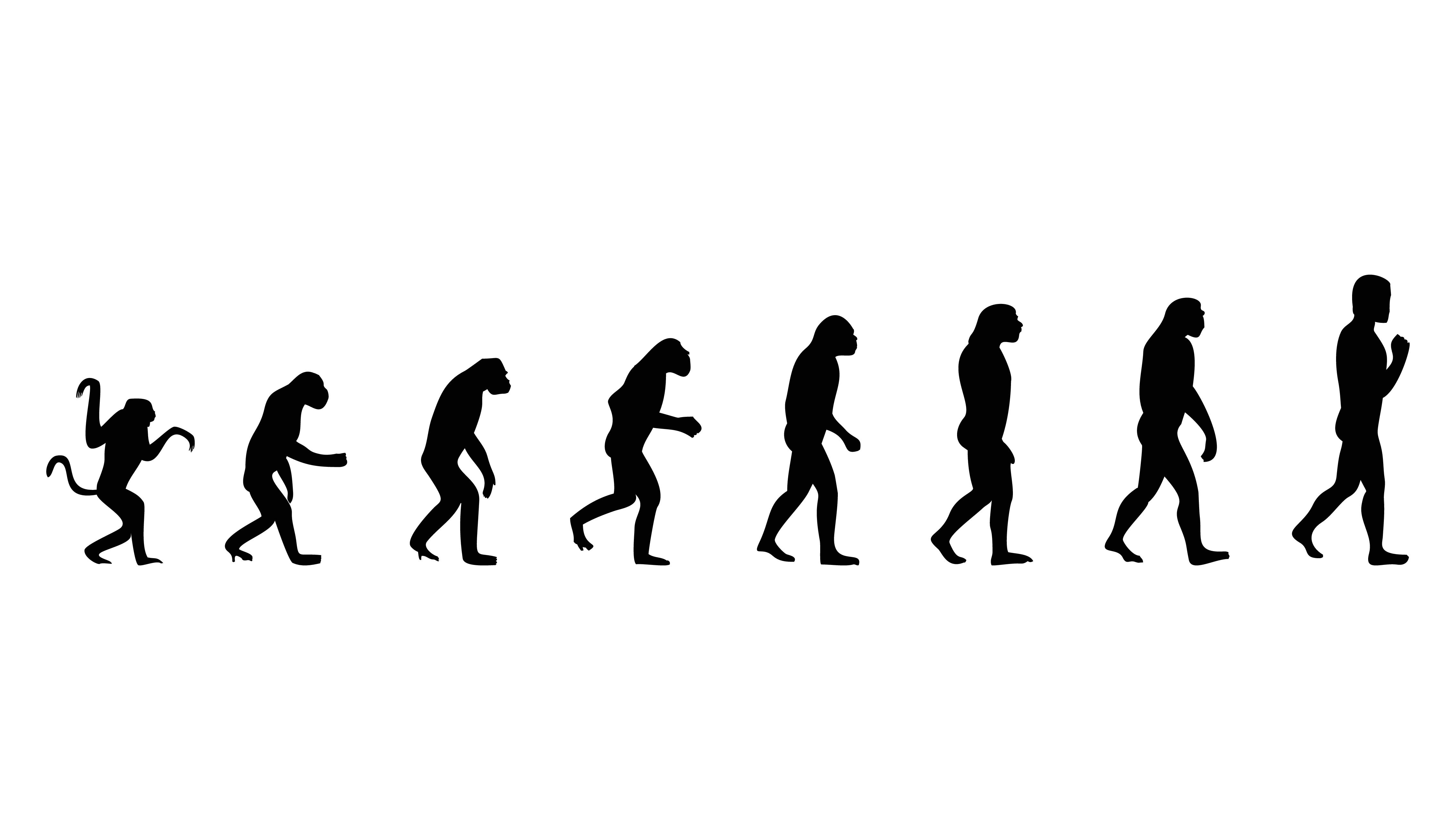 Evolusjon Flashcards