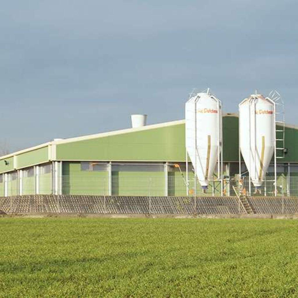 Livestock Farms  Agriculture Steel Structures  Frisomatcom