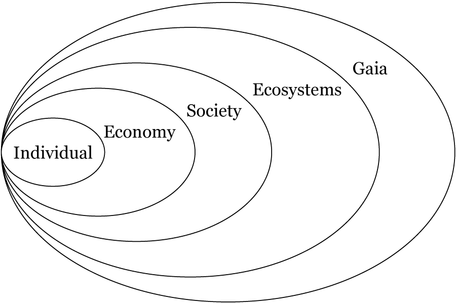 A Conceptual Framework for Ecological Economics Based on