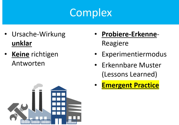FRITZ-Cynefin-Complex