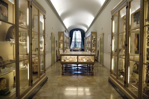il Museo delle Cera Anatomiche di Bologna