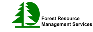 Forestry company ireland