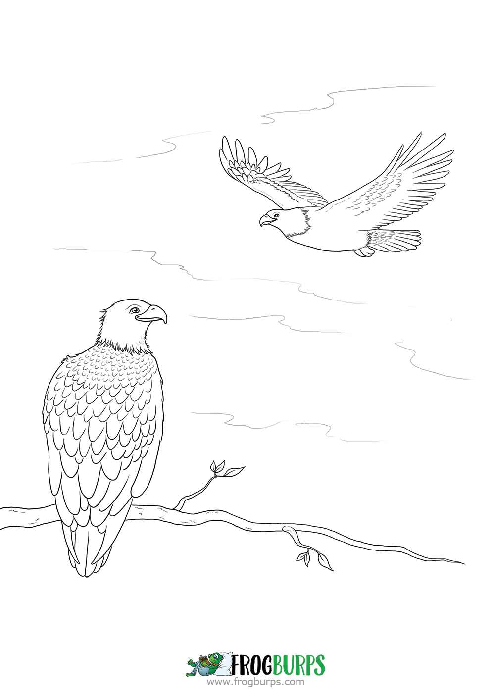 Eagles | Coloring Page