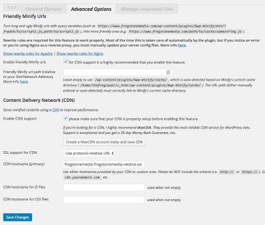 wordpress optimization better wordpress minify advanced options