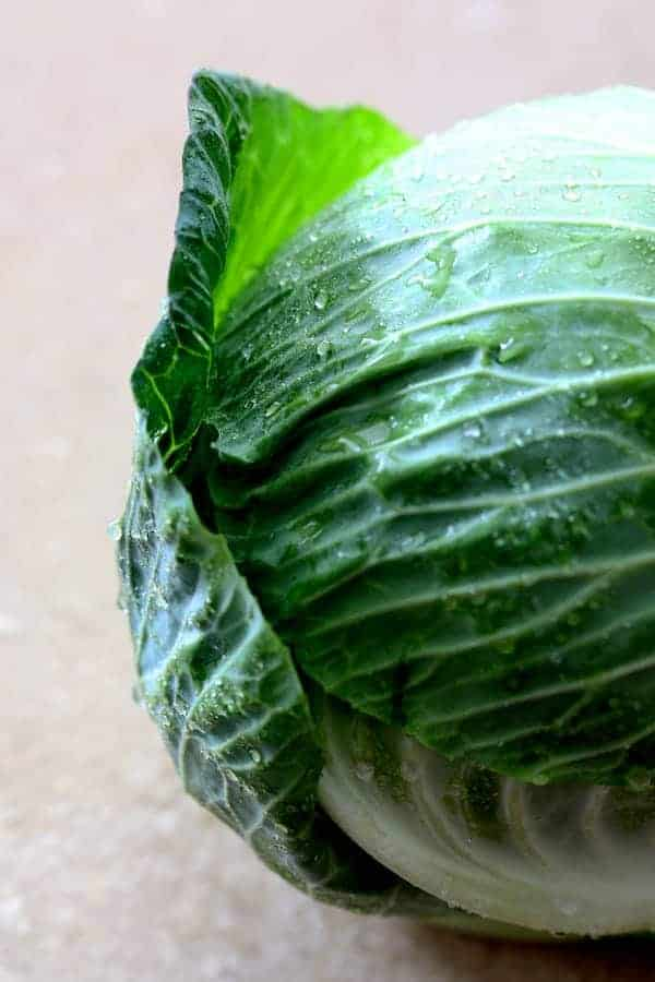 Close-up shot of head of cabbage