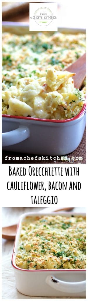 Baked Orecchiette with Cauliflower, Bacon and Taleggio is comfort food with an elegant twist!