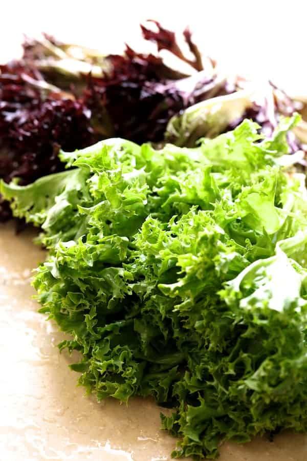 French Lentil Salad - Frisee lettuce