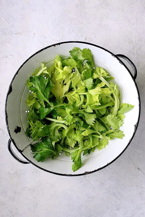 Overhead shot of white antique colander full of celery leaves