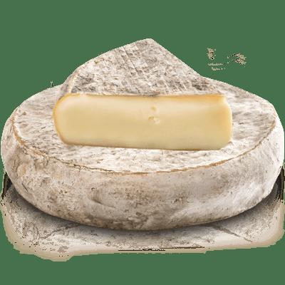 """Résultat de recherche d'images pour """"fromage auvergnat"""""""