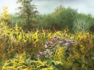 Wildflowers Oil 8x10